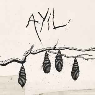 AYIL (1)